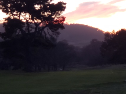 Sunset over the park